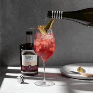 Gin Spritz Recipe
